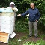 Dan Godston recording beehive