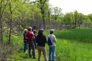 Soundwalk at Miller Woods, May 2014