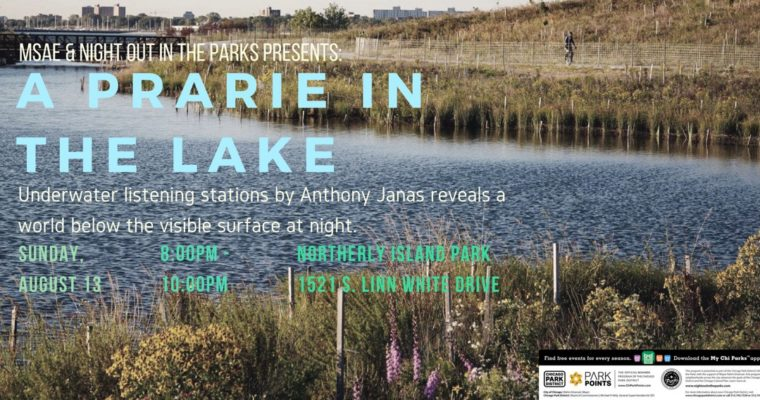 Prairie In the Lake at Northerly Island with Anthony Janas | Sunday, August 13